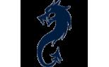 Black Dragon Stunt Supplies